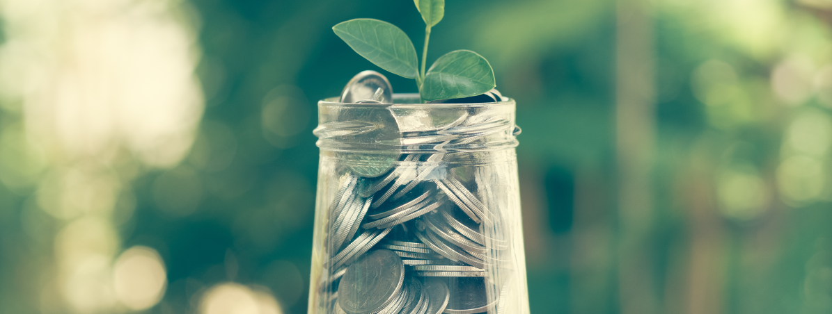 16 maneiras de poupar dinheiro