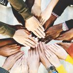 2 de julho: Dia Internacional do Cooperativismo