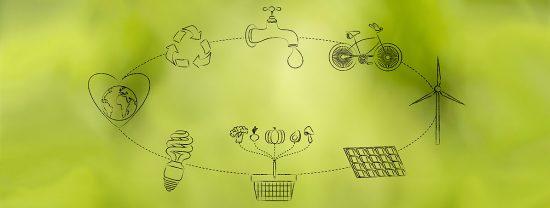 Os 12 princípios do Consumo Consciente
